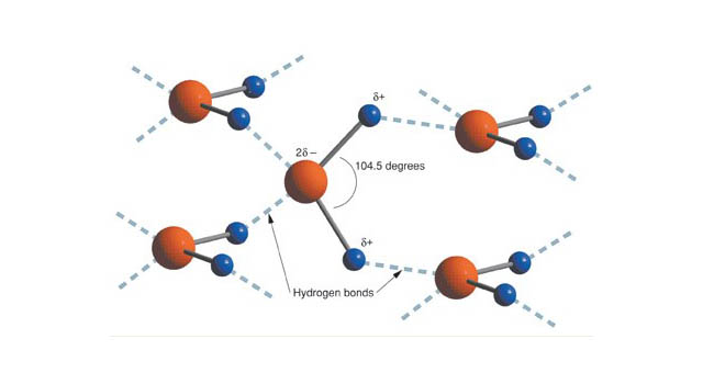 How Hydrotropes Enhance Stability and Clarity